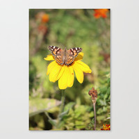 Autumn Butterfly Colors Canvas Print by Theresa Campbell D'August Art