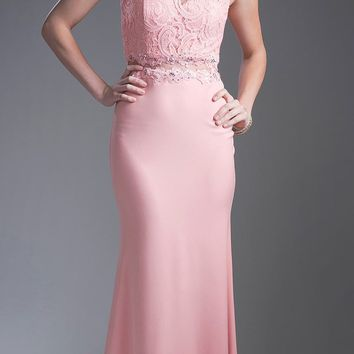 Long Lace Bodice Stretch Knit Sheath Dress Blush Sleeveless