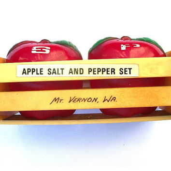 Back to School Teacher Vintage Mt. Vernon Washington Apple Plastic Salt and Pepper Shakers - Kitchy Kitchen Home Decor - Tagt Team