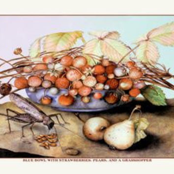 Bowl of Strawberries, Pears and a Grasshopper 20x30 poster