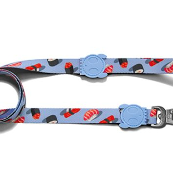 Wasabi | Dog Leash