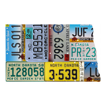 North Dakota License Plate wall decal