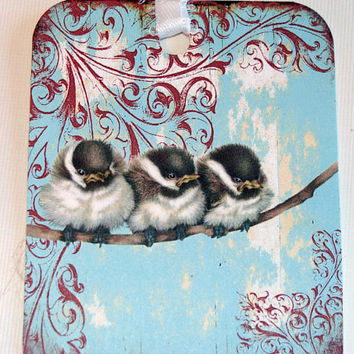 Fuzzy Baby Birds On A Branch On Blue Vintage Inspired Set of 6 Gift Tags