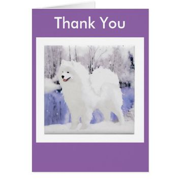 Samoyed Greeting Card; Change the Message Options Card