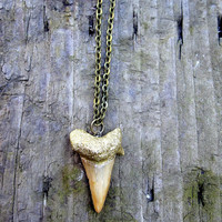 Gold Leaf Shark Tooth Necklace with Chain by Windsday on Etsy