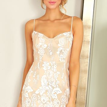 Lace Bustier Bodycon Dress Nude