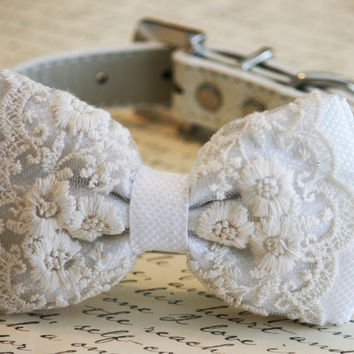 White Lace Dog Bow Tie, Vintage Pet wedding, Lace wedding, White Wedding