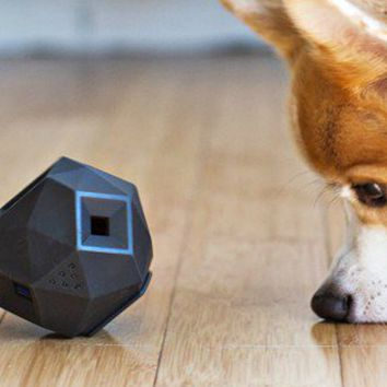 The Odin Best Interactive Dog Treat Enabled Toy