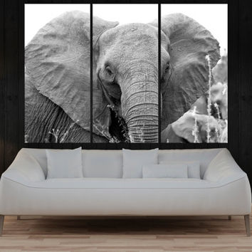 Elephants photo print on canvas, Wild Animal art print, nature canvas print, large poster wall art prints modern wall decoration 7s90