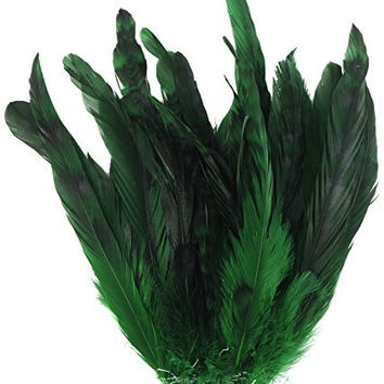 Zucker Feather Products BCCCL8-10--K Chinchilla Rooster Coque Tails