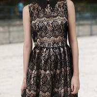 Lace Lapel Lovely Dress from linany