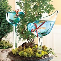 Bird Plant Feeders, Glass Plant Feeders, Water Plants while Traveling | Solutions