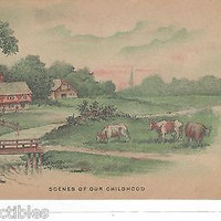 Early Post Card-Scenes of Our Childhood-Cows