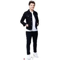One Direction 1D Louis Tomlinson Lifesiz Cardboard Standup Stande Cutout Poster