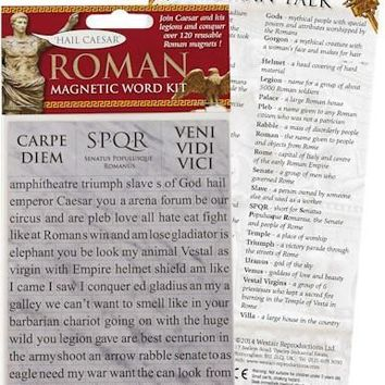 Magnetic Word Kit Learn Ancient Roman Words 120 Reusable Refrigerator Magnets
