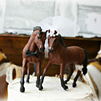 Horse-bride-groom-wedding-cake topper-Mr and Mrs-ivory-barn wedding-horseback riding-rustic-western-country-cowboy-cowgirl-horse lover-