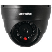 Security Man Simulated Indoor Dome Camera With Led