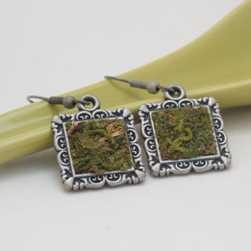 Green Moss Earrings, Eco Friendly, Terrarium Jewelry, Living Plant Jewelry, Earth Day, Garden Gift