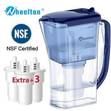 Dual Filter Kettle and Attach extra 3  cartridge Water Filter
