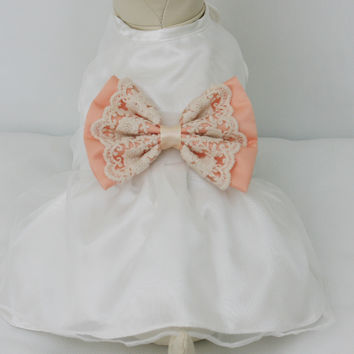 Peach Lace Dog dress,Flower girl , Peach pet Wedding accessory