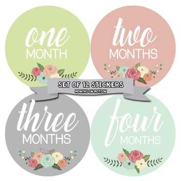 Floral Baby Girl Monthly Baby Stickers - Set of 12