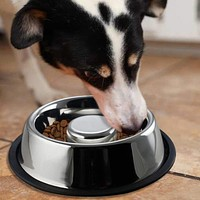 Slow Feeder Stainless Steel Pet Bowl with Anti Skid Rubber Base, Large, Gray and Black