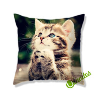 Cute Cat Square Pillow Cover