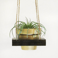 Succulent Planter, Hanging Planter, Air Planter, Succulent Pot, Modern Planter, Indoor Planter, Wood Planter, Terracotta Pot, Gold Planter