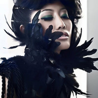 Black Feather and Lace Neckpiece/Sash