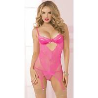 Sexy Peek a Boo Fishnet and Lace Chemise Garter Set