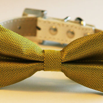 Yellow Green dog Bow tie leather collar, pets Wedding accessory
