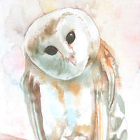 Jareth - 9x12 Original Watercolor Painting - barn owl art