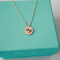 Dainty Circle Coin 12 Constellation  Capricorn Necklace