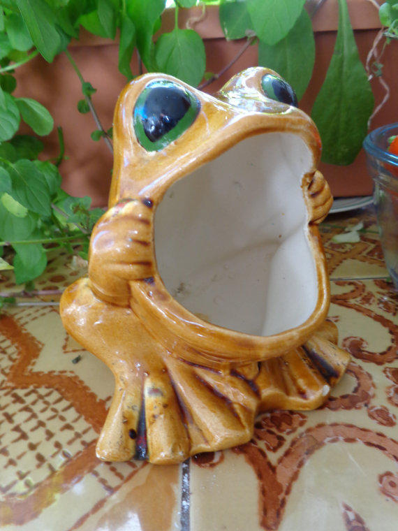 Frog Planter Dish Sponge Scrub Holder From Herhappyheart On