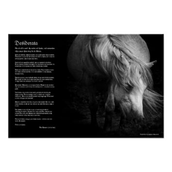 Desiderata - Fine Art Pony Head and Mane Print