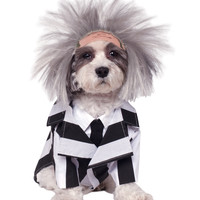 Beetlejuice Pet Costume – Spirit Halloween