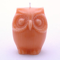 Afred The Owl Orange Scented Candle by cherrybcandles on Etsy