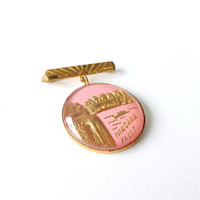 Gold Tone and Pink Niagra Falls Souvenier Brooch 1970s Lapel Pin Sweater Brooch