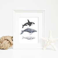 Hand Painted Whale Trio Digital Download