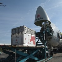 Cargolux operates charter flight to Jakarta to transport horses for Asian Games | Air Cargo