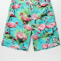 Vans Flamingo Elastic Waist Shorts - Mens Board Shorts - Purple