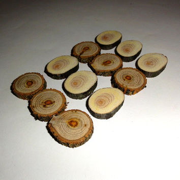 Small wood slices 12 Pc Tree Log Slices Wood Discs Rustic Wedding Wood Slabs. Dried pieces Rustic Tree Slices Decor Disc Log crafts DIY Wood