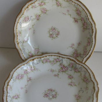 Pr Rare Haviland Limoges Theodore Haviland Limoges France China Limoges France French Tableware French Antiques Limoges Bowls