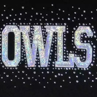 Owls Team Name - Rhinestone and Foil Iron on Hot Fix Transfer Bling - DIY for shirts - mascot transfer, sequins, hotfix, bling, moms