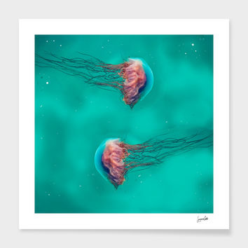 «Jellies» Art Print by Suzanne Carter - Numbered Edition from $24.9 | Curioos