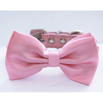 Pink Dog Bow tie, Chic and Elegant, Love Pink- with high quality leather collar