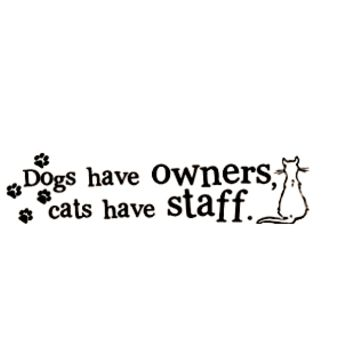 Cats have staff Wall Decal