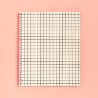 Rough Draft Large Notebook- Mini Grid