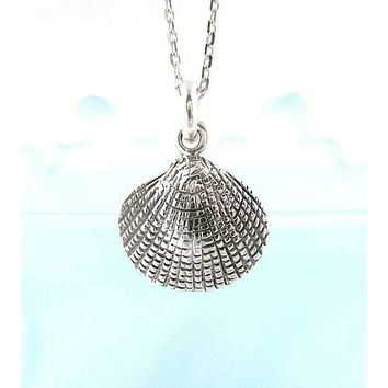 Little Scalloped Clam Seashell Necklace