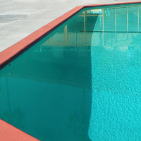 Mid Century Swimming Pool Architectural Landscape